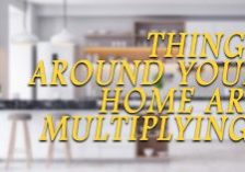 Home-Things-Around-Your-Home-Are-Multiplying